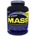 Up Your Mass 5lb-Vanilla
